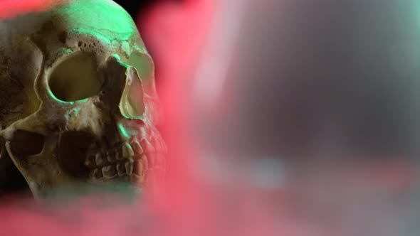 Thumbnail for Closeup of a Skull in Smoke on a Black Background with Red Light