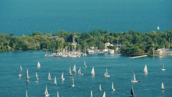 Cover Image for Sailing Regatta Around Central Island Opposite Toronto Canada
