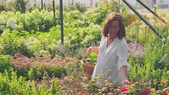 Woman Walking In Summer Garden