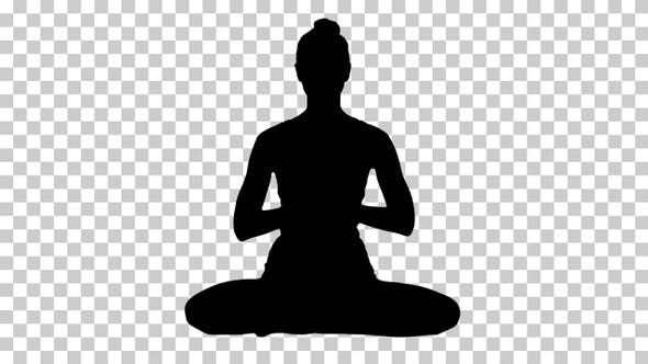 Thumbnail for Silhouette Yogi, Alpha Channel