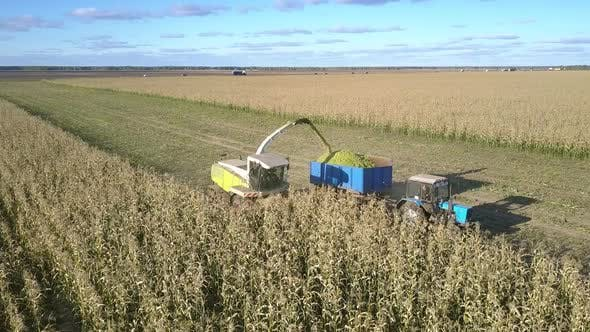 Thumbnail for Harvester Chops Corn Stems and Unloads Into Trailer