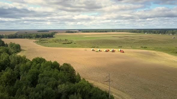 Thumbnail for Upper View Harvesters and Trucks Stand on Wheat Field