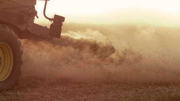 Cover Image for Combine Harvester Gathers the Wheat Crop.