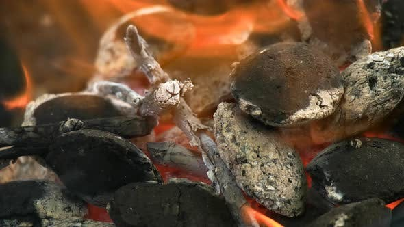 Thumbnail for Coal   2