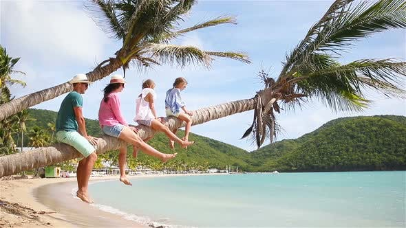 Thumbnail for Young Family on Beach Vacation on Palmtree