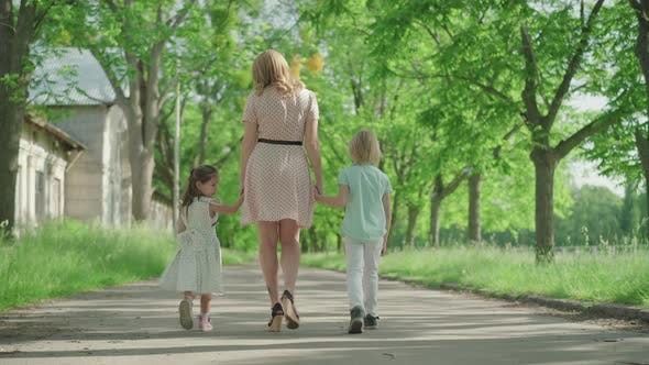 Thumbnail for Back View of Young Blond Caucasian Mother Walking with Two Children Along the Alley in Park. Wide