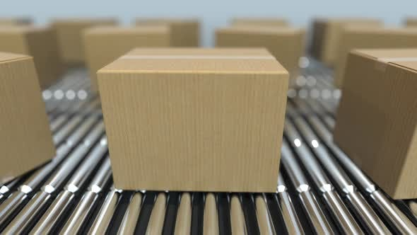 Cover Image for Blank Carton Boxes on Roller Conveyors