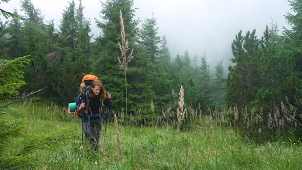 Thumbnail for Girl Hiker Walking In The Forest