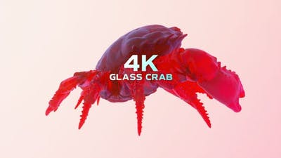 Glass Crab