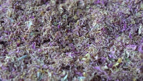 Cover Image for Rotation Shredded Tea Rose 2