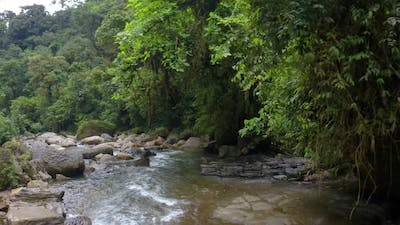 River Anzu in the Andes, a river with large boulders lined with trees