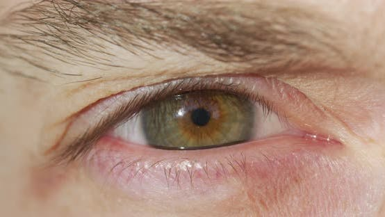 Cover Image for Extreme close up of a green eye