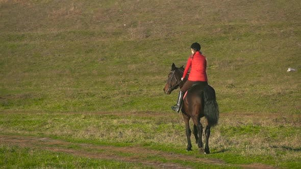 Thumbnail for Rider Galloping on a Green Field on Horseback
