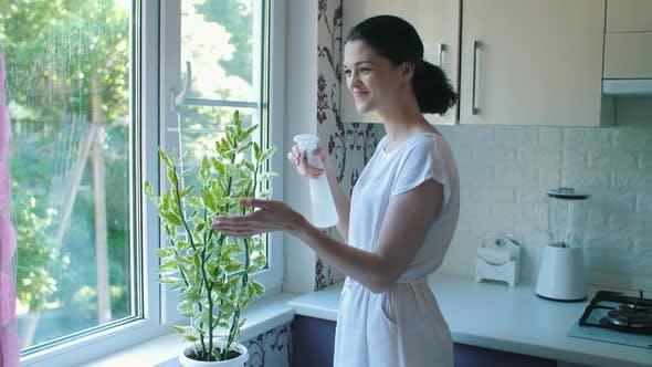 Cover Image for Frau Sprühen eine Pflanze mit Wasser