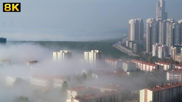 Fog in the Urban City