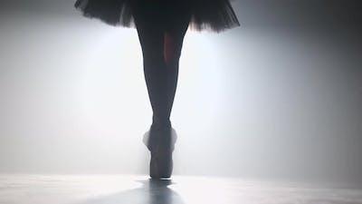 Close up silhouette of ballerina legs in tutu dress