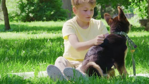 Playful Boy and Little Puppy Spending Together Time at Park