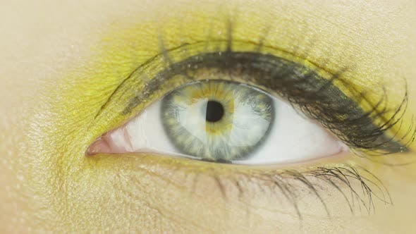 One Female Eye with Makeup Open, Blink, Look Directly and To the Side. Close-up