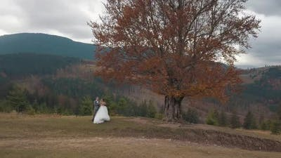 Lovely Newlyweds Bride Groom Dancing on Mountain Autumn Slope Wedding Couple Family Aerial View