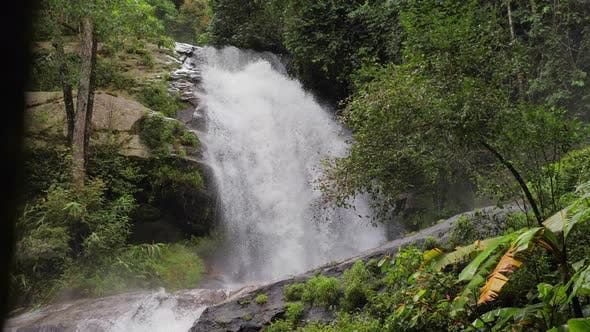 Cover Image for Waterfall In Forest