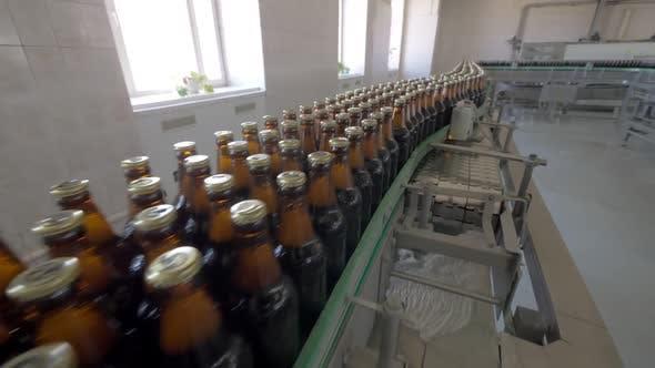 Thumbnail for Gefüllte und verkorkte Flaschen auf Förderband in Bierfabrik