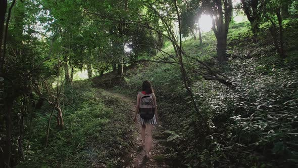 Thumbnail for Traveler Girl with Bag Walking Along a Path in Mountain Rainforest of Tall Trees, Shrubs, Fern