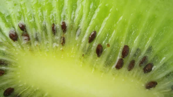 Thumbnail for Panning macro view of kiwi seeds from cut fruit