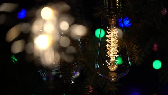 Thumbnail for Sparklers Are Lit Against the Background of Light Bulbs Flashy Flashlights Background. Close Up