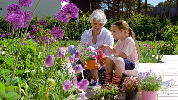 Thumbnail for Grandmother and Girl Planting Flowers at Garden 22