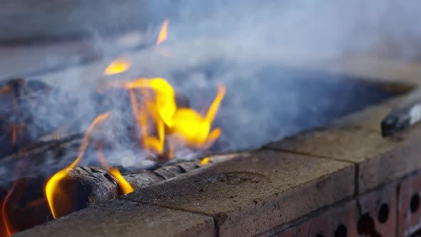 Thumbnail for Barbecue Fire
