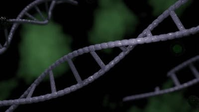 DNA and Bacteria