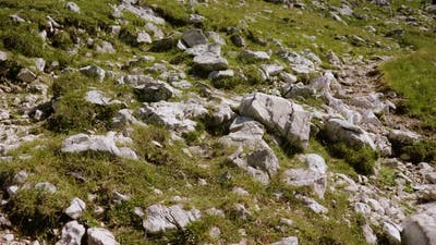 Boulders Among Green Grass on the Rocky Mountain