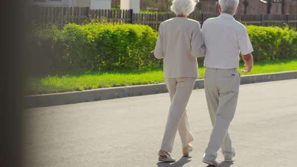 Cover Image for Elderly Couple Walking Outdoors on Summer Day