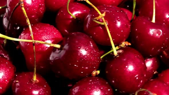 Thumbnail for Rotating Ripe Cherry Berries 5