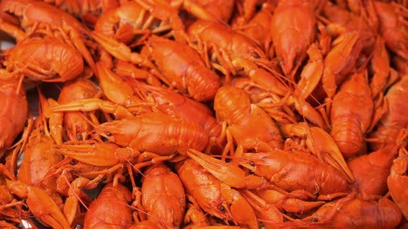 Red Boiled Crawfish  Rotate on a Tray