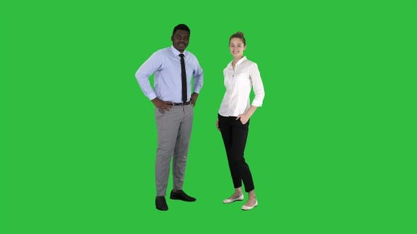 Thumbnail for Successful businesspeople business team posing on a Green