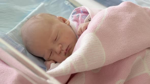Newborn Baby Girl Asleep