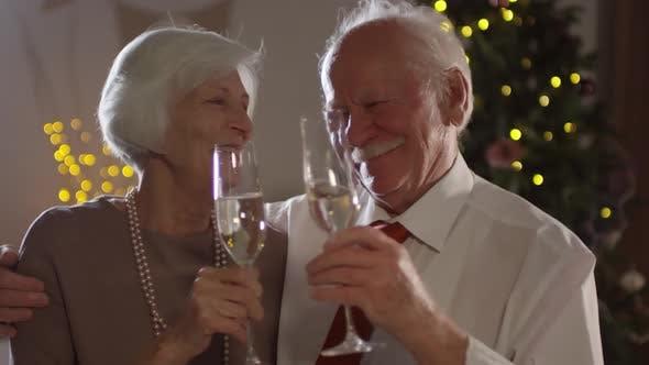 Thumbnail for Sweet Elderly Couple Clinking Glasses on Christmas