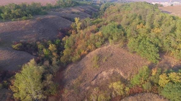 Cover Image for Hügelige Schlucht mit Herbstbäumen, Büschen und Gras. Luftbild