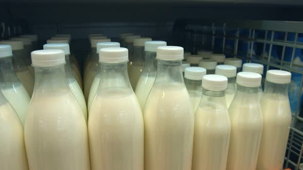 Thumbnail for Bottled Milk on Shelf in Store