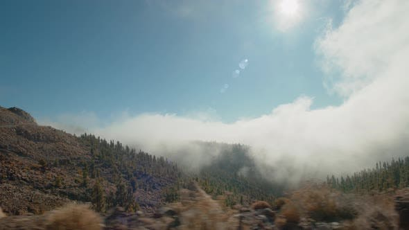 Thumbnail for A Beautiful View of a Mountain Slope with Pine Trees Covered in Fluffy Cloud