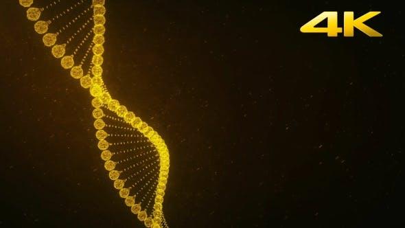 Thumbnail for Gold Plexus DNA Background 4K