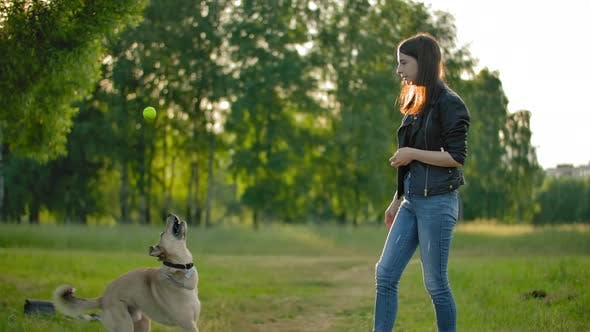 A Girl Throws a Tennis Ball To Her Dog.