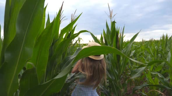 Thumbnail for Beautiful Little Girl in Straw Hat Running Through Corn Field, Turning To Camera and Smiling