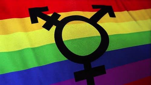 Transgender Bisexual Gay Pride Flag Loop