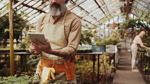 Thumbnail for Cheerful Male Farmer Using Tablet and Smiling at Camera in Greenhouse