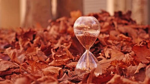 Sandglass Filled with Golden Sand Stands Among Leaves Heap