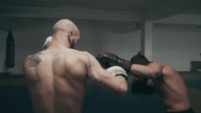 Kickboxing Mma Fighters In Training Session