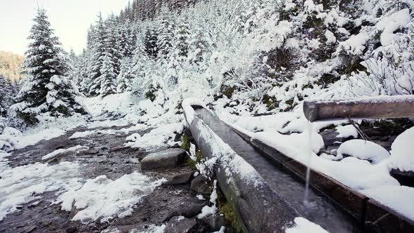 Water flowing from the source (spring) made from wood in mountainous forest in Carpathian mountains
