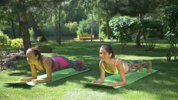 Thumbnail for Fitness Sporty Women Doing Plank Exercise in Park